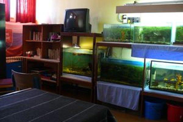 Kultúrna miestnosť v žilinskej väznici. Odsúdení v nej môžu pozerať televíziu, čítať knihy a venovať sa záujmovým činnostiam.