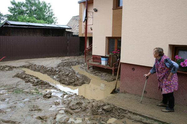 Bystrany - horný koniec, blato v záhrade