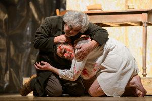 Frankensteing (moje svedomie) spolu s Danielom Žulčákom