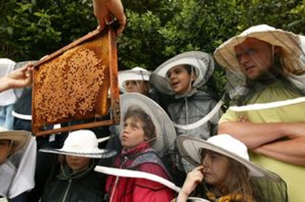Aj v Bytči sa budú deti zoznamovať so včelami.