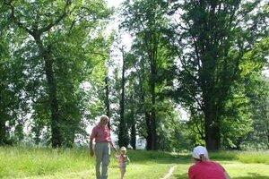 Park pri Budatínskom hrade je častým miestom vychádzok Žilinčanov. Práve kvôli ich bezpečnosti niektoré choré stromy vytnú.