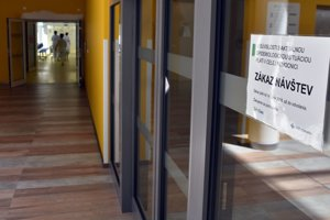 V okrese Michalovce vyhlásili pre osýpky mimoriadny stav.