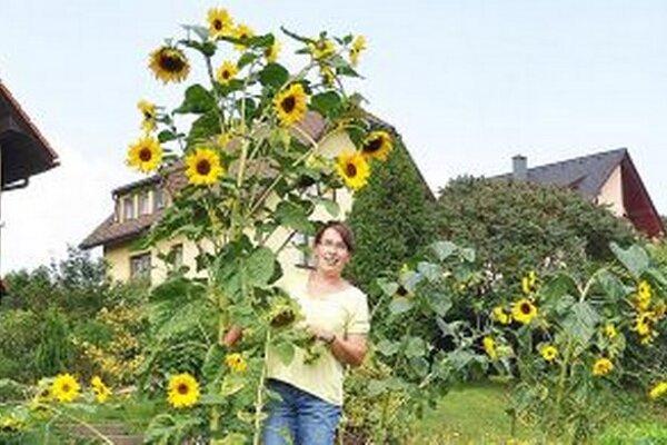 Šťastná pestovateľka stojí na stoličke.