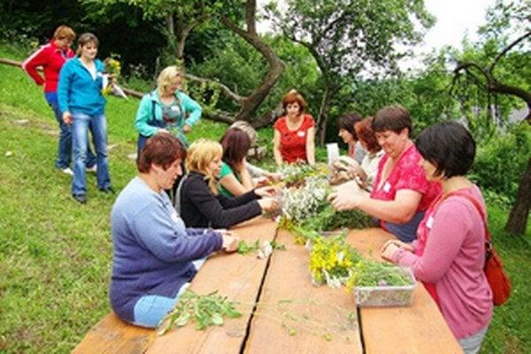 Zbieranie byliniek