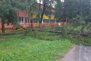 Strom spadol na plot materskej školy v Poprade.
