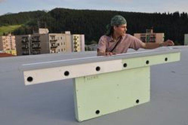 Búdky pre netopiere. Na Slovensku ich robí Martin Ceľuch zo Spoločnosti pre ochranu netopierov.