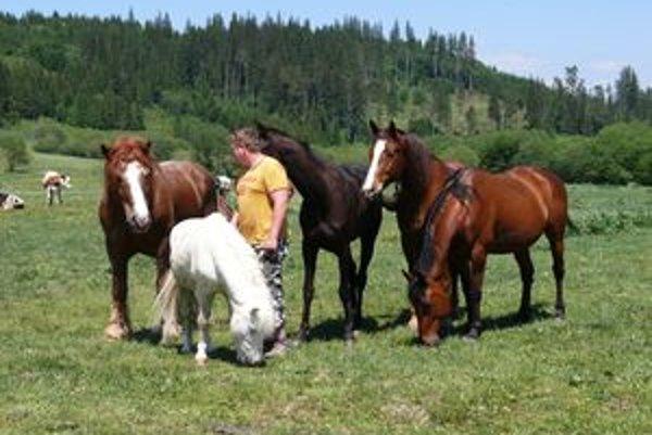 Po príchode na lúku zvieratá Petra spoznali, okamžite sa k nemu začali zbiehať. Biely poník bol darčekom pre Petrovu dcéru.