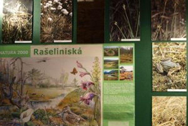 Všetko o oravských rašeliniskách sa dozviete vo Florinovom dome.