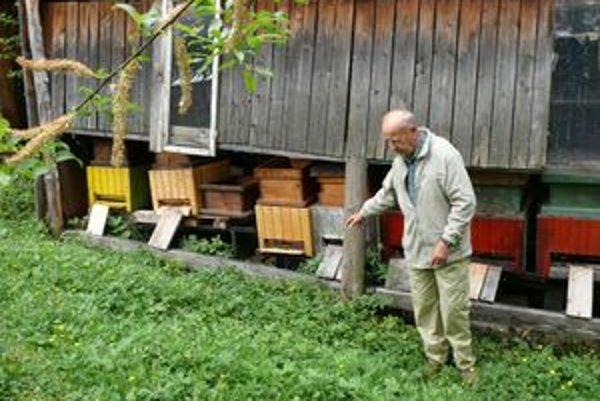 Pre ľudstvo má obrovský význam opeľovacia schopnosť včiel. Vedec Alberet Einstein kedysi vyhlásil, že po smrti poslednej včely do päť rokov zahynie aj naša planéta.