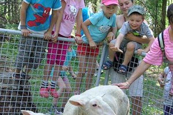 U Maťka a Kubka. Deti tu zaujali hlavne ovečky a tiež neposlušný psík.
