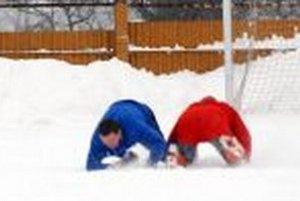 Zimné cvičenie s krycím názvom - Kto hľáda, nájde. Aj loptu.