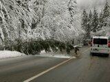 Stromy popadali aj na cestu horského priechodu Šturec