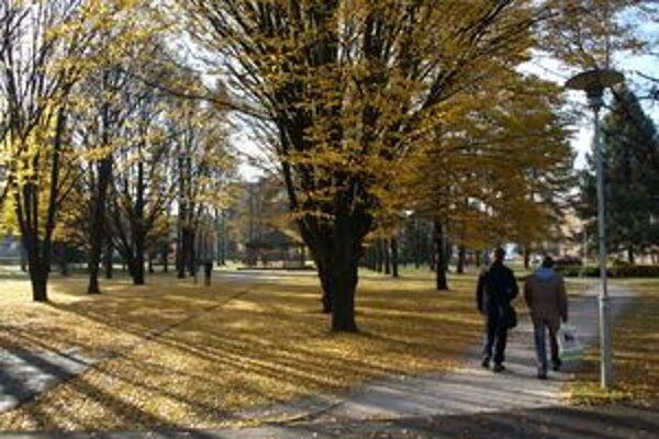 Krásna jeseň. Začiatkom novembra sme mali aj 15 stupňov.