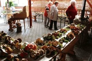 Výstava húb v Malinovej.