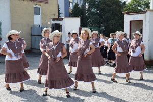 Súbor Kamélie z Gelnice.