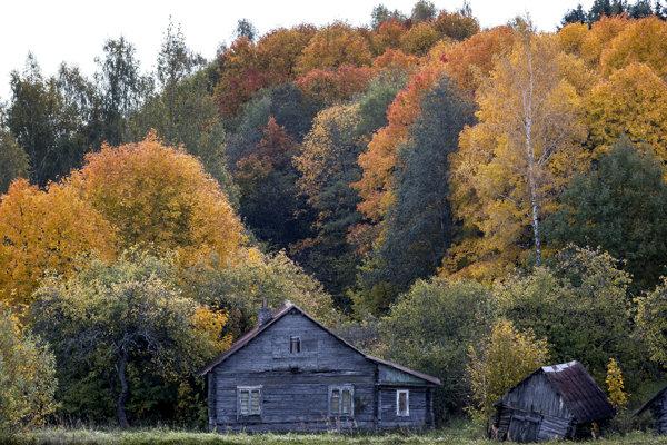 Na jeseň sa v listoch prestane vytvárať zelené farbivo. na povrch sa tak dostanú skryté farby.