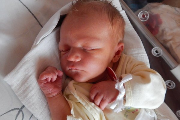 """Alex Kocúrek - Radostné dni prežívajú aj Michaela a Martin z Radôstky. V utorok 16. októbra sa im narodil synček Alex Kocúrek (3780g, 54cm). Meno Alex má grécky pôvod a jeho význam je """"obranca""""."""