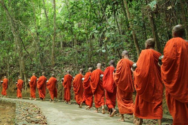 Mnísi požívajú na Srí Lanke veľkú úctu.