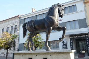 Nový kôň na Zvonárskej ulici dostal meno Cassa.