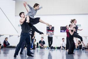 Baletní tanečníci sa pripravujú na niekoľko inscenácií súčasne, dokopy trénujú okolo osem hodín denne.