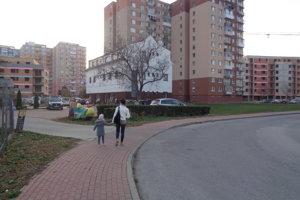 Feketeházyho ulica v Šali