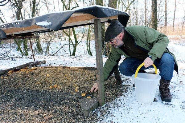 Vladimír Slobodník pravidelne dopĺňa potravu pre vtáky v niekoľkých kŕmidlách.