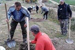 Ovocné stromy nad Žabokrekmi sadilo asi tridsať dobrovoľníkov zdediny.