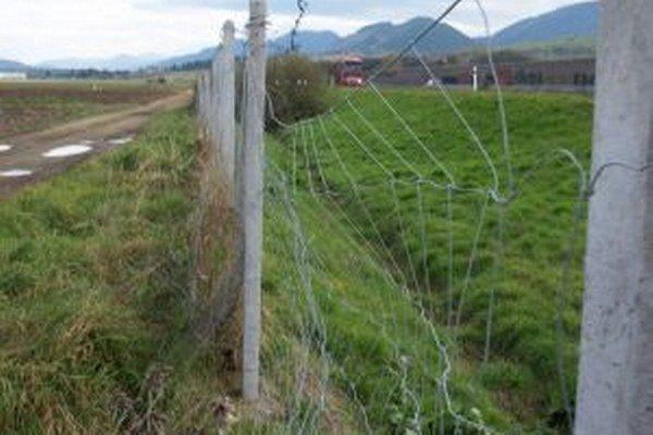 Diaľničiari poškodené ploty pravidelne opravujú, ale vždy nájdu ďalšie zničené.