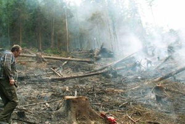 Pri hasení pomáhali dobrovoľní hasiči i profesionáli.