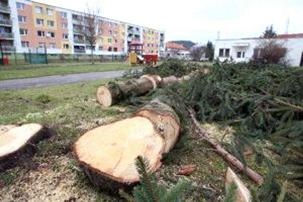 Stromy sa sadili na sídliskách v čase ich výstavby, dnes dorástli do rozmerov, ktoré ľuďom prekážajú.