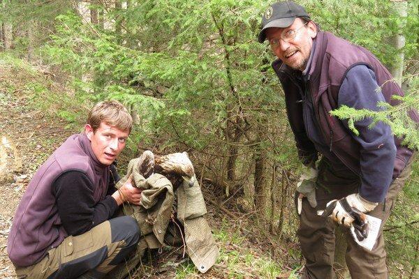 V ústí Račkovej doliny našiel turista zraneného asi trojročného orla skalného. Pracovníci Správy Tatranského národného parku mu poskytli pomoc. Teraz sa lieči v rehabilitačnej stanici v Zázrivej.
