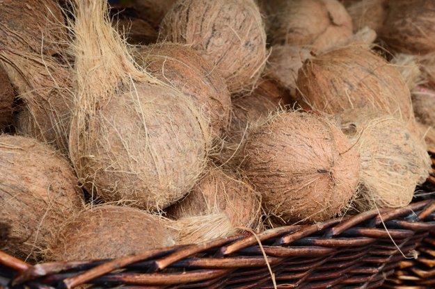 Kokosové orechy