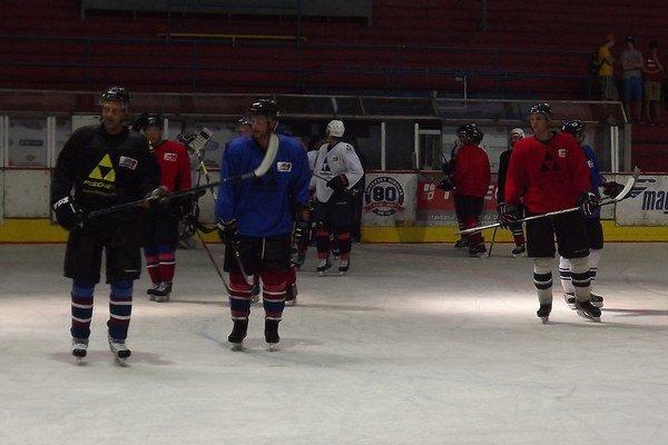 a hokejistov čakajú počas tohto týždňa úvodné prípravné zápasy.
