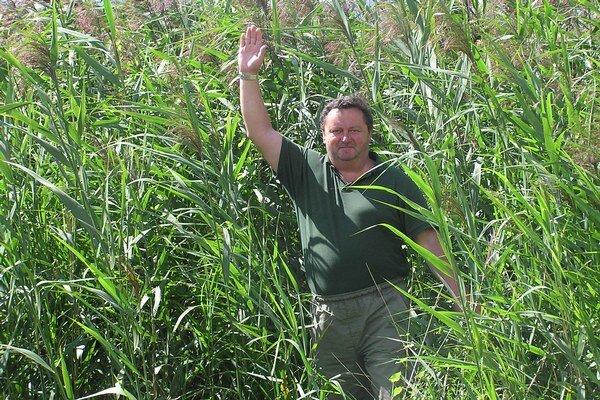 Jaroslav Demko v teréne pri výskume energetickej biomasy.
