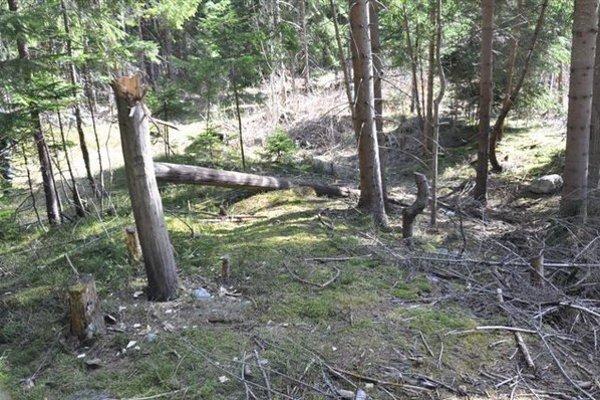 Zlodej zničili drevené telefónne stĺpy, na ktorých kábel visel.