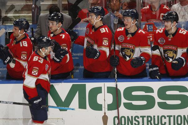 Hokejisti Floridy Panthers.