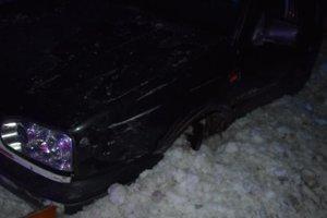 S autom sa zaryl do snehu.