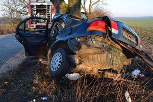Vodič nezvládol zákrutu a narazil do stromu.