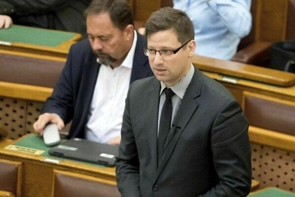 Podpredseda Fideszu Gergely Gulyás.
