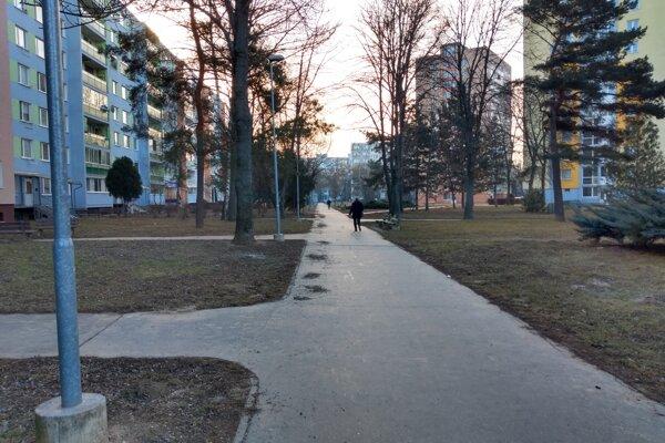 Kôpky na chodníku by mali byť odvezené do druhého dňa, v praxi to nefunguje.
