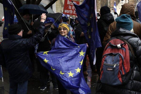 Demonštrantka proti brexitu