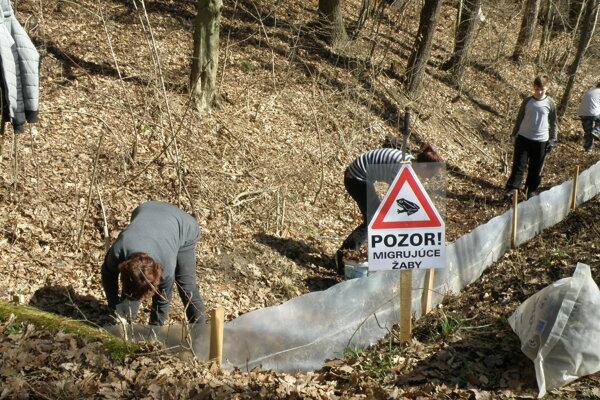 Na migrujúce žaby upozorňuje aj značka.