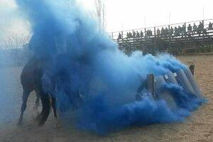 Policajné kone musia zvládať aj dym z dymovníc.