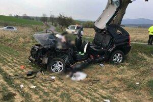 S autom vrazila vodička do stromu.