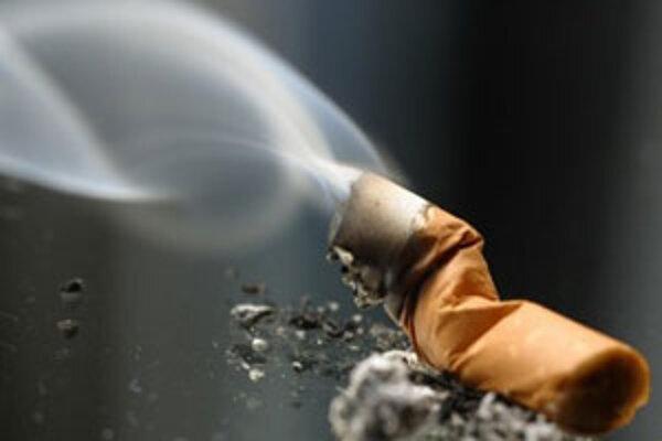 Odborníci na dnešnej tlačovej besede upozornili na problém fajčiacich matiek.
