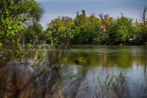 Rieka Morava bola pred viac ako storočím na niektorých miestach dvakrát taká široká ako dnes.