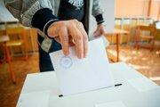 Voľby do Európskeho parlamentu (ilustračné foto)