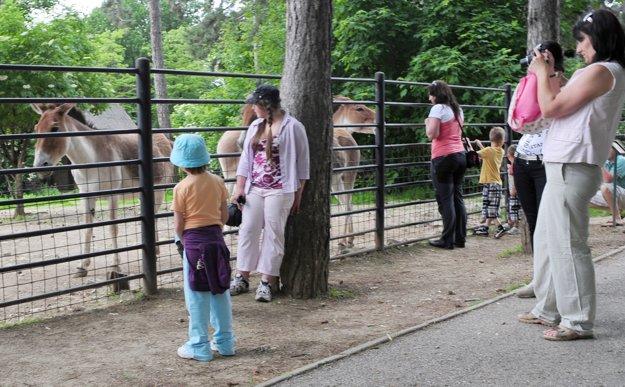 Bojnická zoo začína cez víkend letnú sezónu bohatým programom.