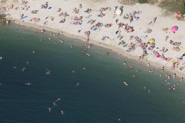 Plastový odpad má na morskú flóru aj faunu zlý dopad.