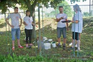 Dobrovoľníci sa činili aj na Základnej škole s materskou školou Pavla Demitru v Dubnici nad Váhom.